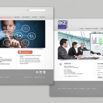 Web stránka BIZ Consulting