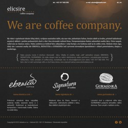 Web stránka Elicsire